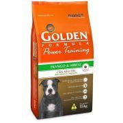 Golden Power Training Adultos