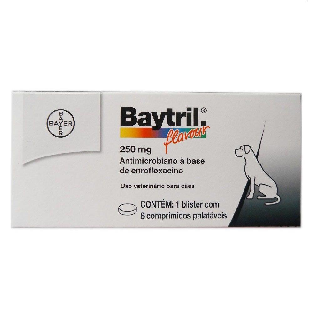 Baytril Flavour Cães 250mg  - Brasília Pet