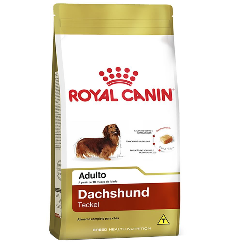Royal Canin Dachshund Adulto  - Brasília Pet