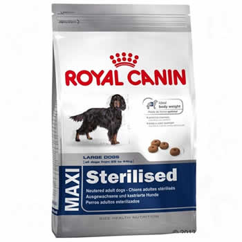 Royal Canin Maxi Sterilised  - Brasília Pet