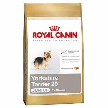 Royal Canin YorkShire Junior  - Brasília Pet