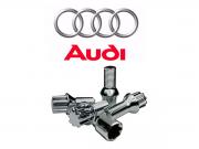 Parafuso Metalmax Dificultador de Roubo Audi 4pçs