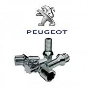 Parafuso Anti Furto Cromado Peugeot 206 207 208 307
