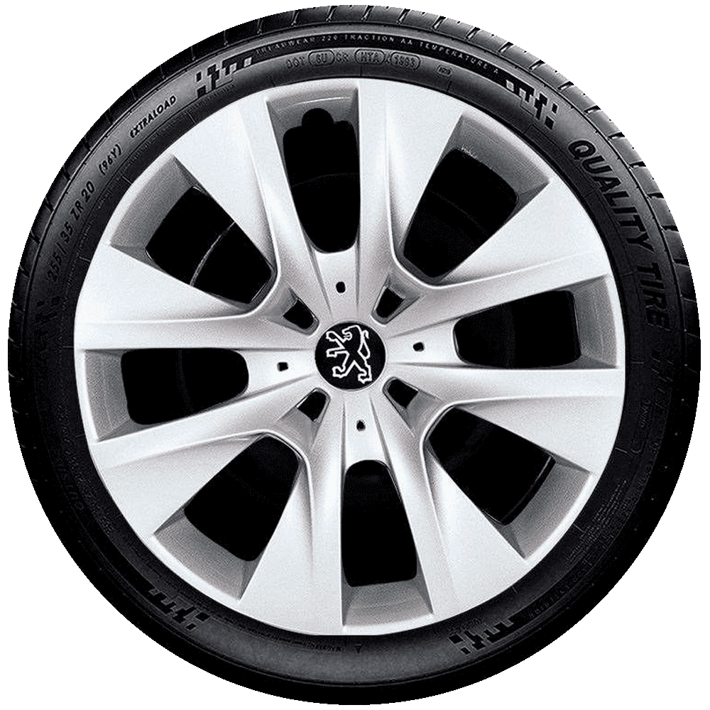 Calota Aro 14 Peugeot 206 207 208 307 G410