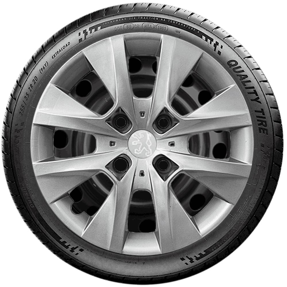Calota Jogo 4Pçs Peugeot 206 207 208 307 Aro 14 G410J