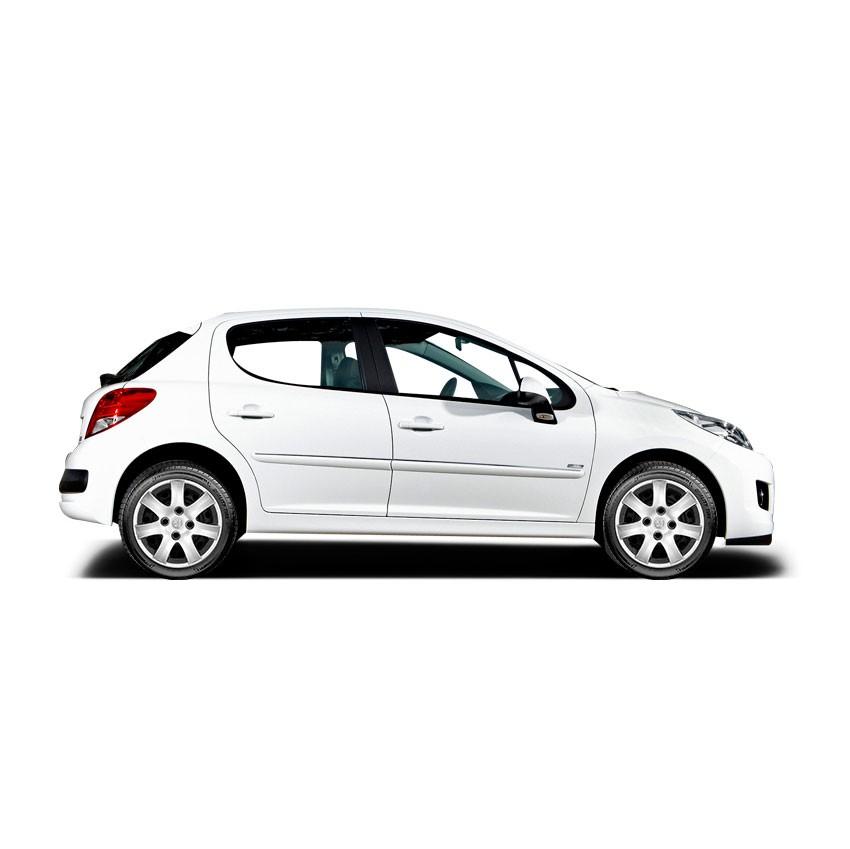 Calota Aro 14 Peugeot 206 208 207 307 G867