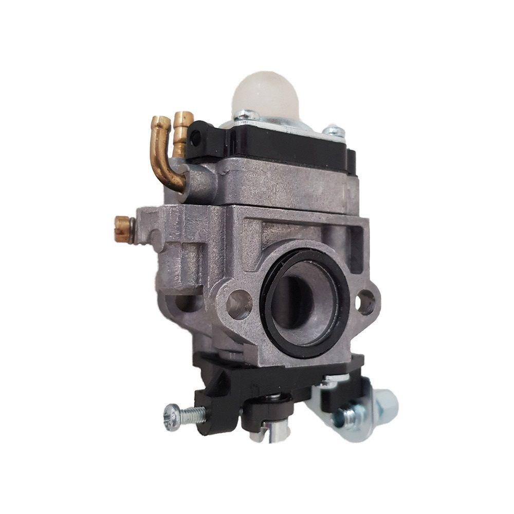 Carburador Pulverizador Gasolina 25 Litros