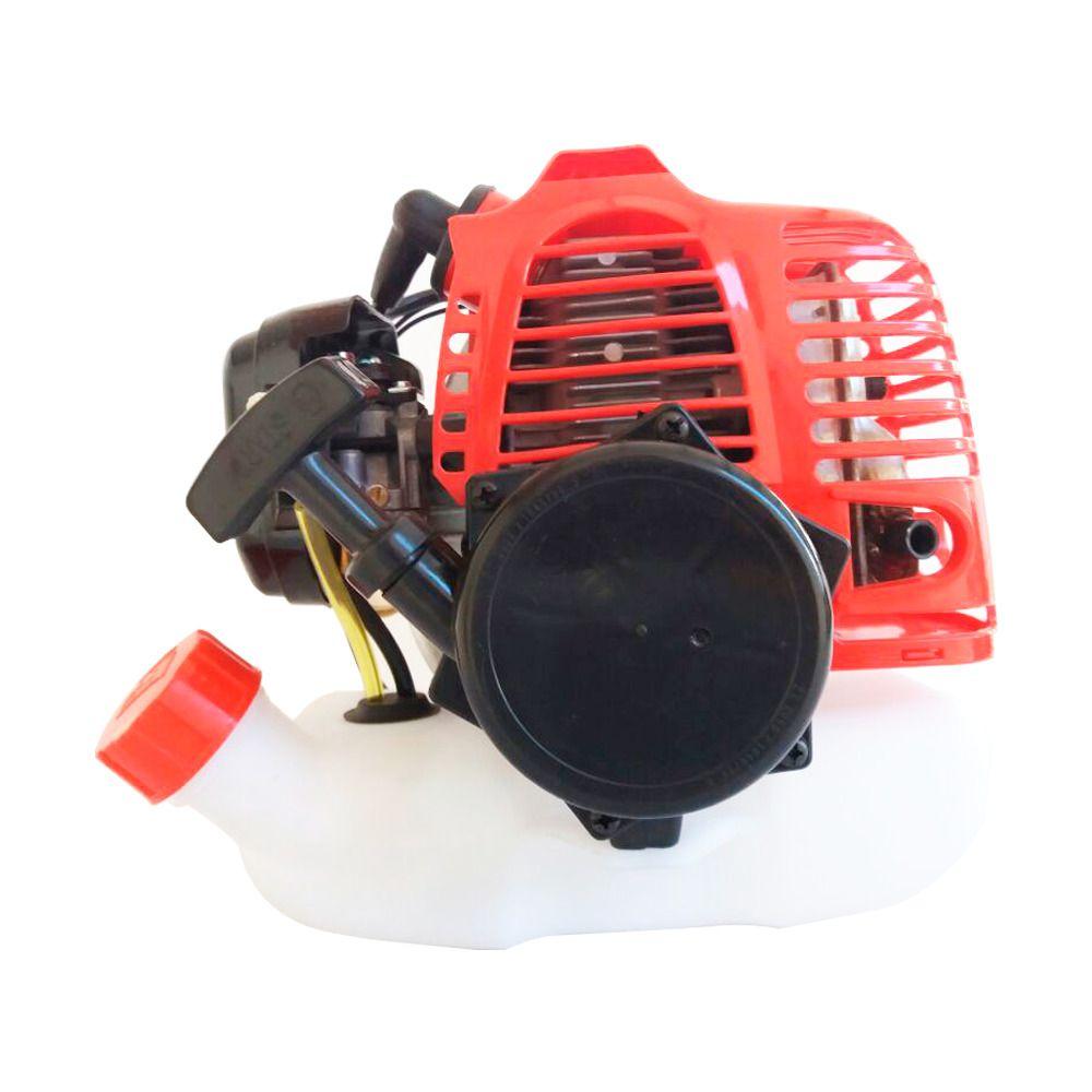 Motor Completo Pulverizador Gasolina 25L