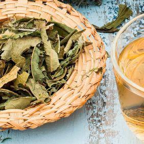 Chá Erva de Bugre