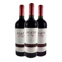 Kit de Vinhos Ágata de Fogo