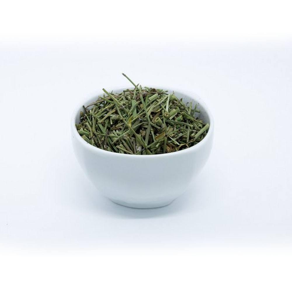 Chá Cavalinha