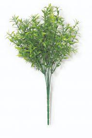 Planta Permanente Alecrim