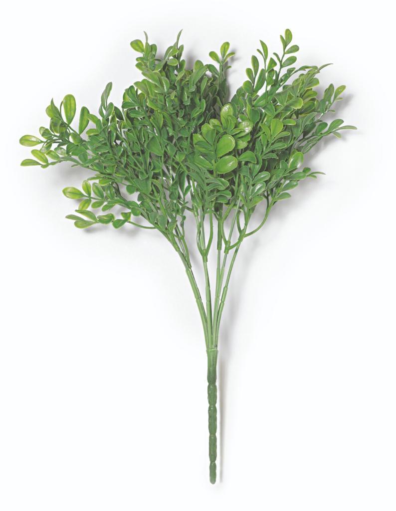 Planta Permanente Folhinhas  Ramalhete