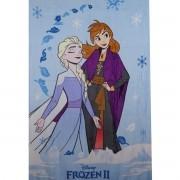 Cobertor Infantil Frozen Manta Fleece Ana E Elsa Lepper