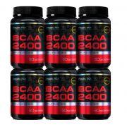 COMBO 6 BCAA 2400 60 CAPS - PROBIOTICA