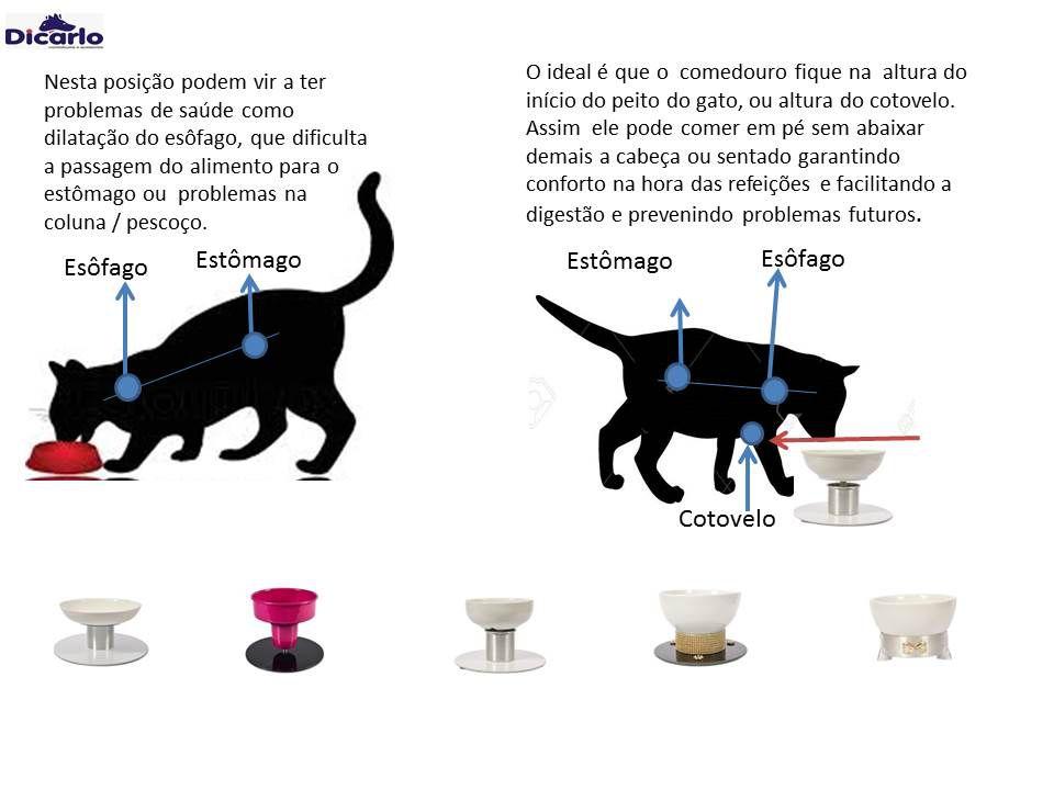 Comedouro / Bebedouro para cães e gatos , em porcelana, com regulador de altura .Não enferruja, não contém aço carbono (ferro) e nem madeira.