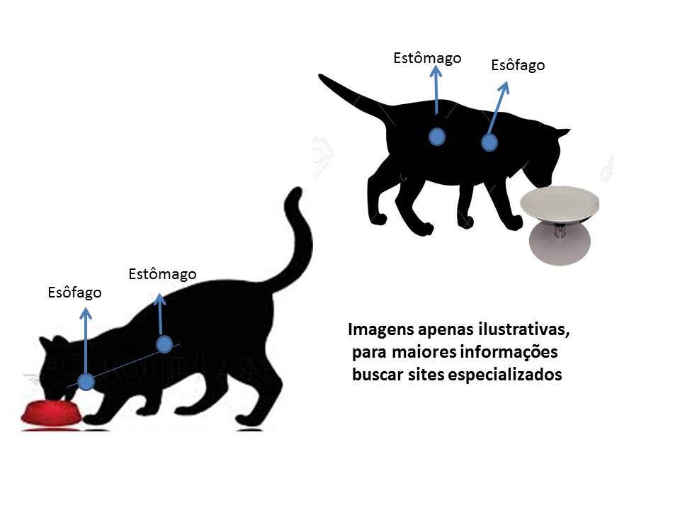Comedouro para gatos  antifadiga de bigodes , antiformiga, elevado, resistente à maresia,não enferruja,não contém aço carbono(ferro), nem madeira.