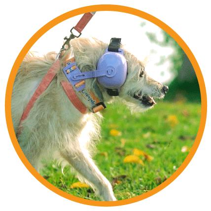 Fone  De Ouvido Para Cachorro - Tamanho 3 vermelho