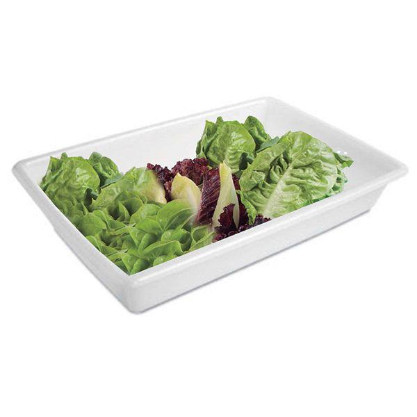Caixa Bandeja P/ Carnes Açougue Alimentos 17 Litros Plasvale 523  - Limpo e Organizado