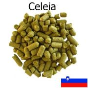 Lúpulo Styrian Golding Celeia - Pellet