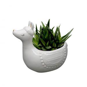 Cachepot Cerâmica Cute Lhama Branco 17.6X11.4X15.3Cm  - Urban