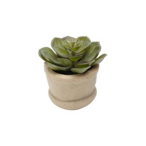 Vaso De Cimento C/ Suculenta De Plástico 10,1X10Cm - Lyor