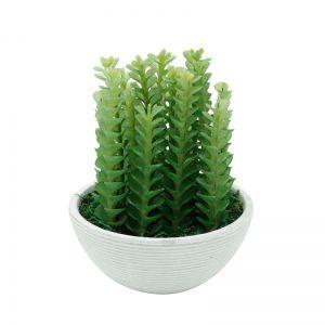 Vaso Plástico E Metal Haworthia Plant Branco E Verde 13,5X13,5X18Cm - Urban