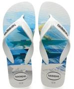 Chinelo Havaianas Surf Casual - 1010