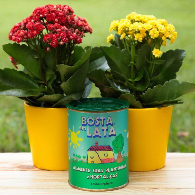 Adubo Orgânico para Plantas e Hortaliças - Bosta em Lata 500g