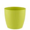 Cor Verde | I.REMO.025.023.23