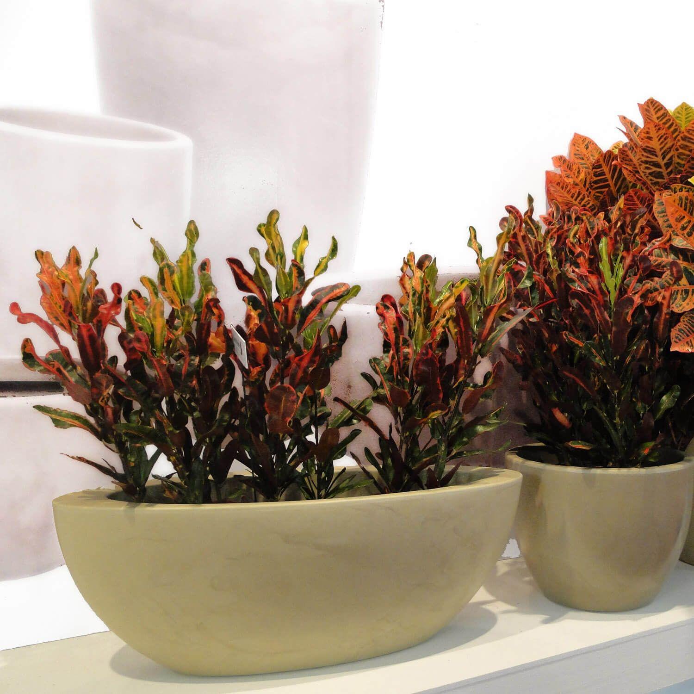 Floreira Verona Oval 80 x 22 cm Vietnamita Vermelho Vasart