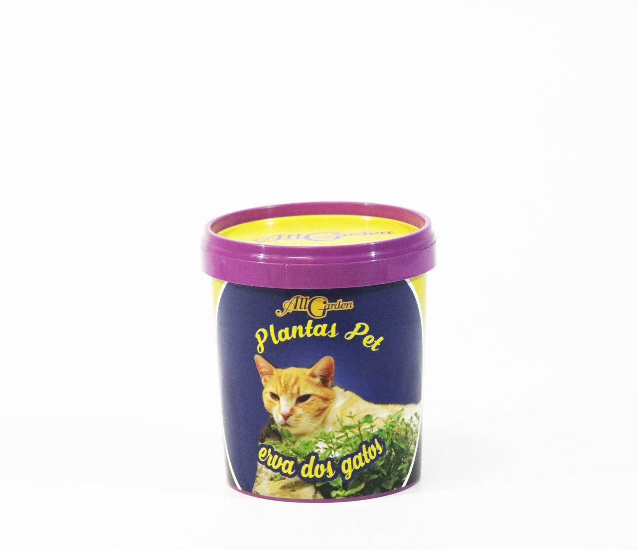 Plantas Pet Ervas dos Gatos All Garden