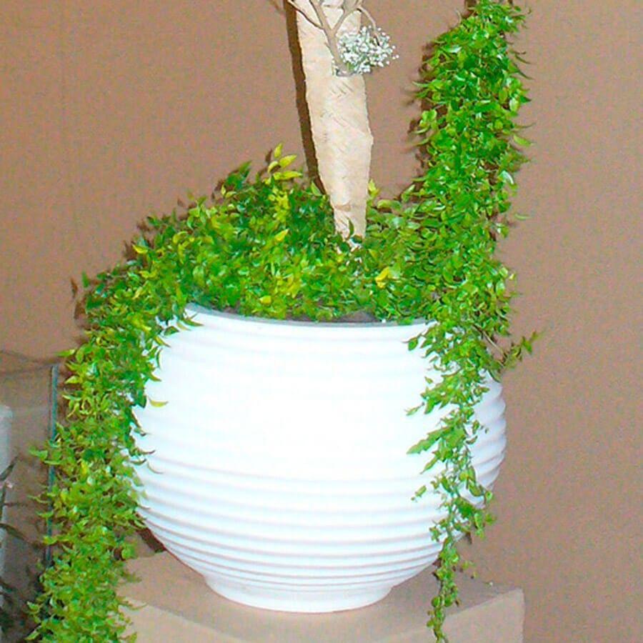 Vaso Bromélia 26 x 24 cm Granito Areia Vasart