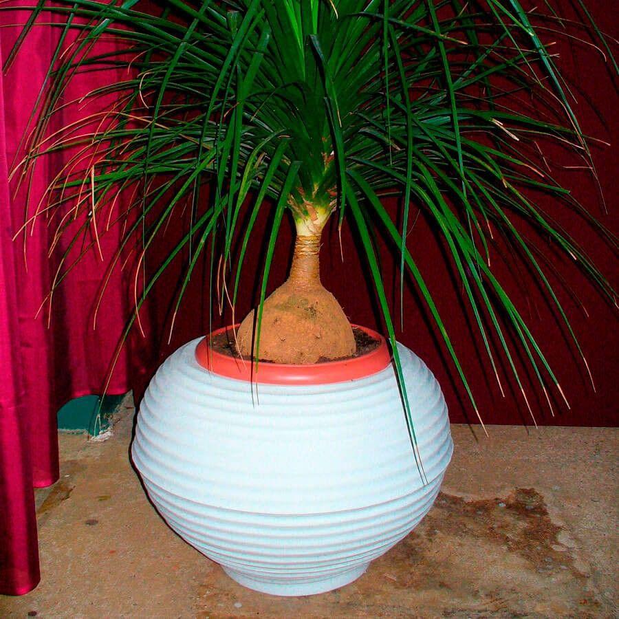 Vaso Bromélia 36 x 37 cm Corten Vasart