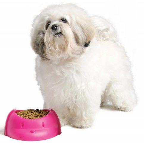 Comedouro Pet Para Cães E Gatos 300 Ml SR642/70