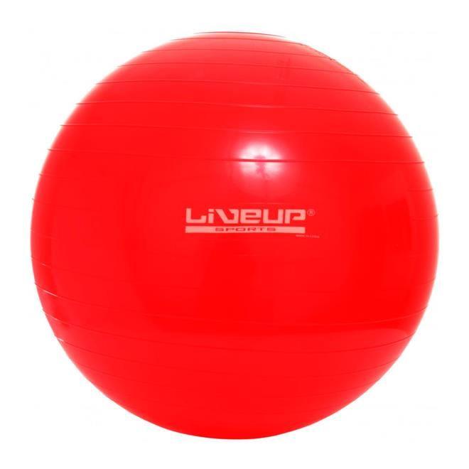 Bola Suiça 45cm