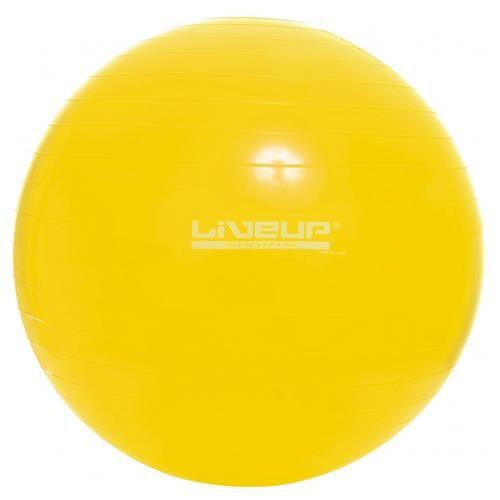 Bola Suiça 75cm