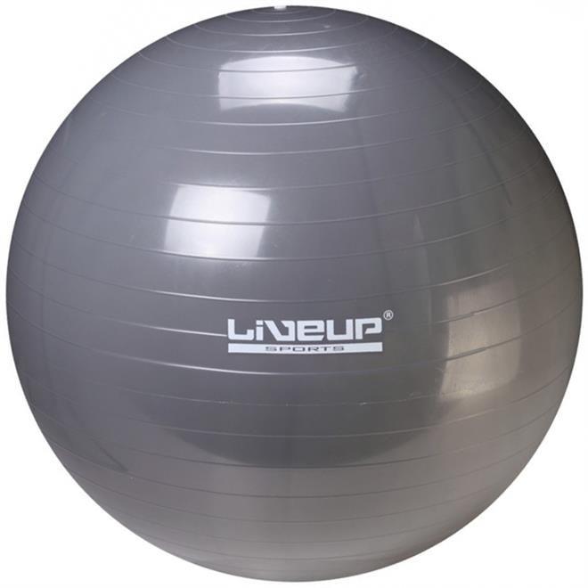 Bola Suiça 85cm