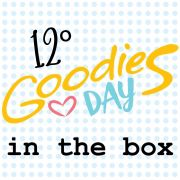 12º GOODIESDAY IN THE BOX - caixa com os projetos, kits e brindes -