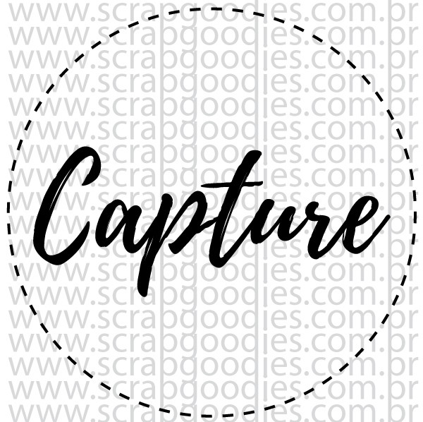 710 - Capture  - SCRAP GOODIES