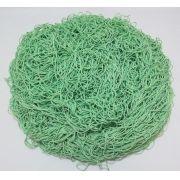 Tira de Macarrão/Espaguete 1.160g Verde Água
