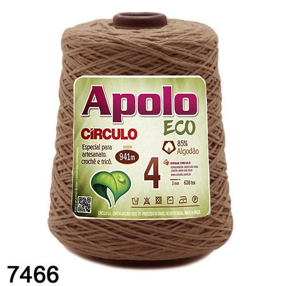 Barbante Apolo Círculo N°4 - 600g Cor 7466