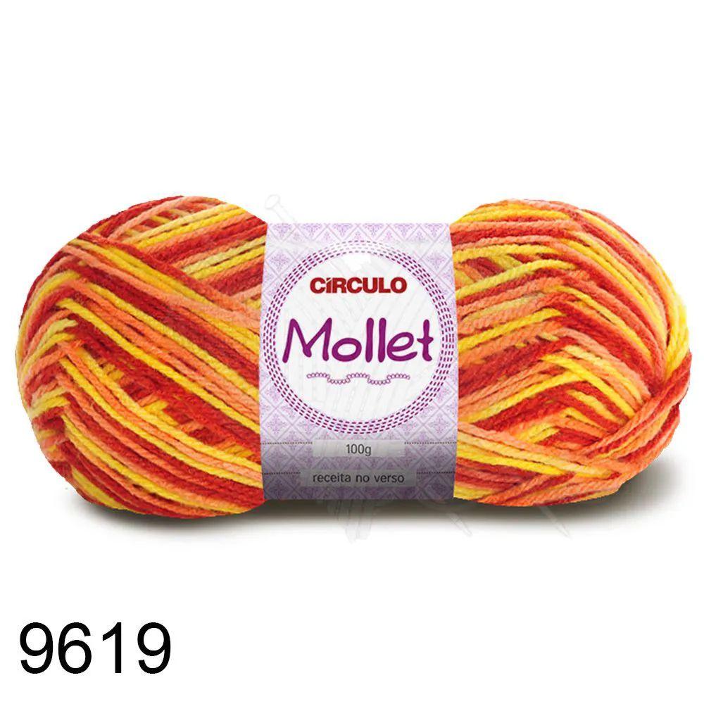 Fio Mollet Círculo Multicolor 100g Cor 9619