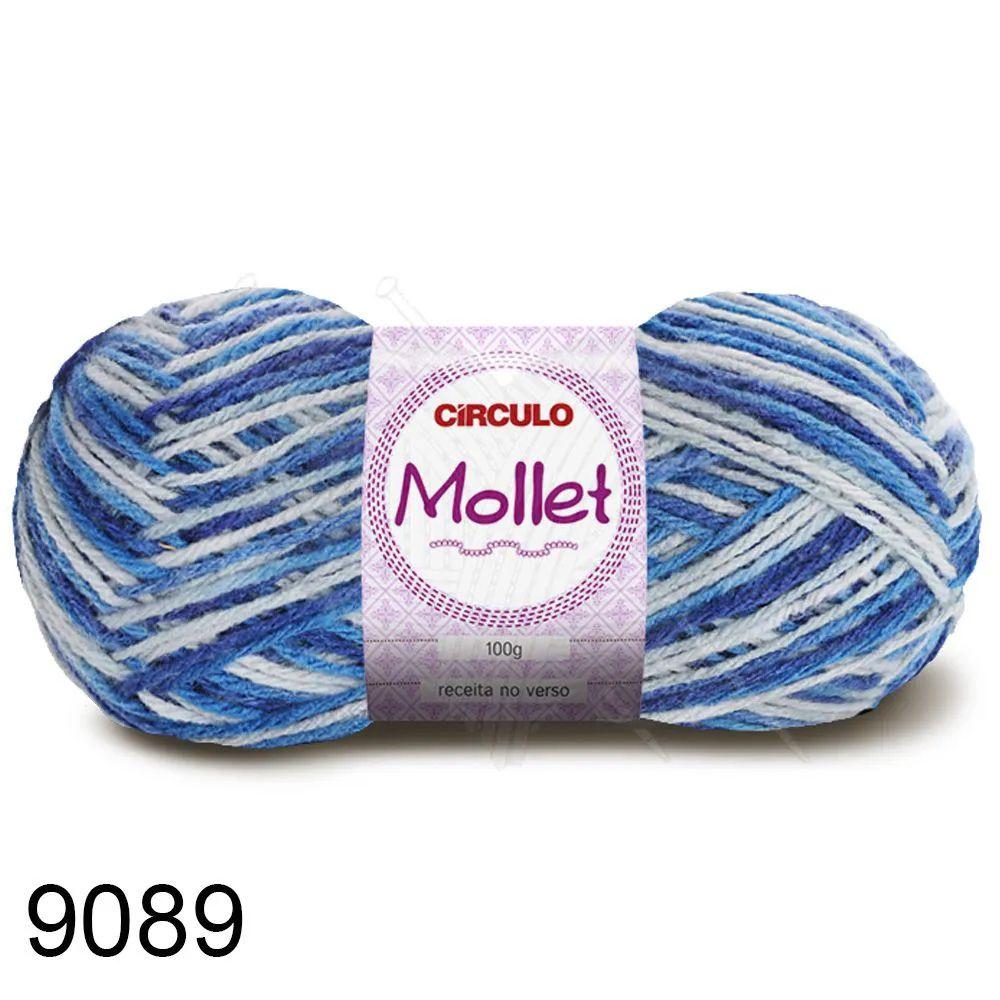Fio Mollet Círculo Multicolor 100g Cor 9089