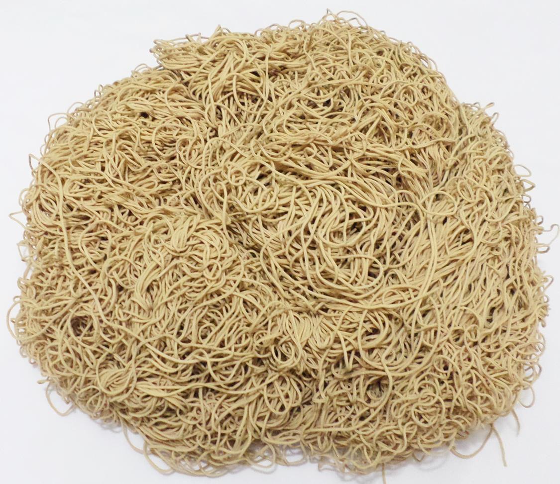 Tira de Macarrão/Espaguete 1.100g Bege