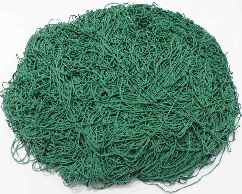 Tira de Macarrão/Espaguete 1.100g Verde