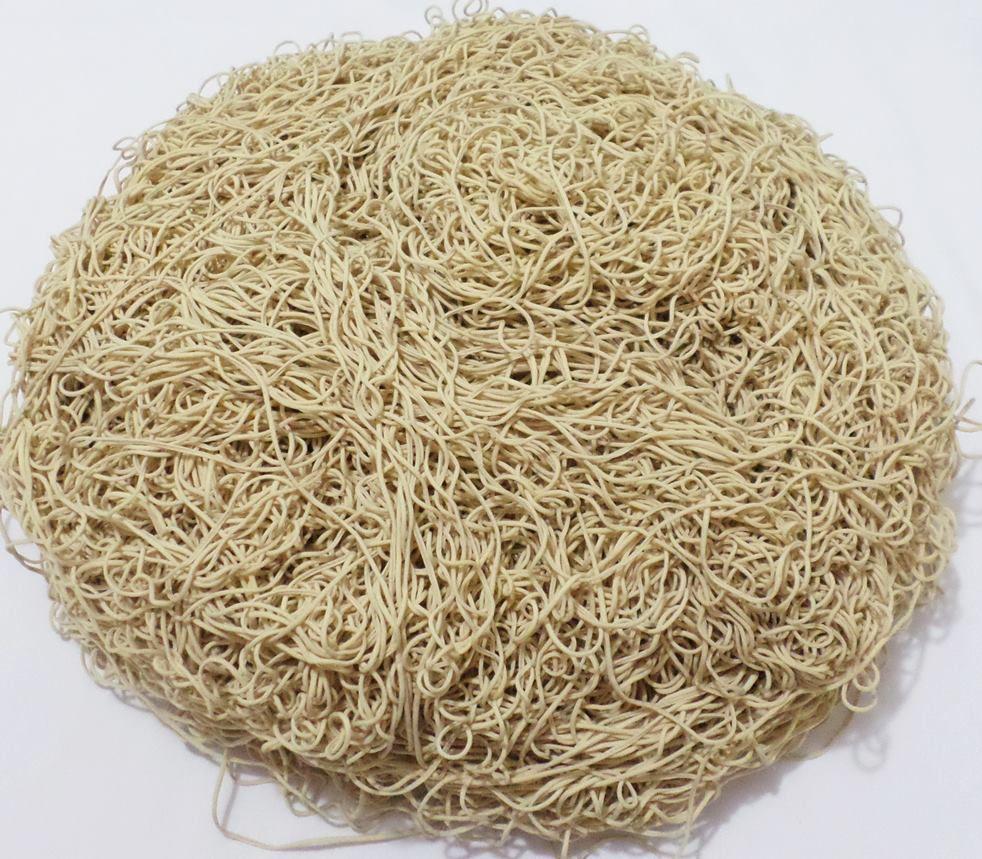 Tira de Macarrão/Espaguete 1.180g Bege