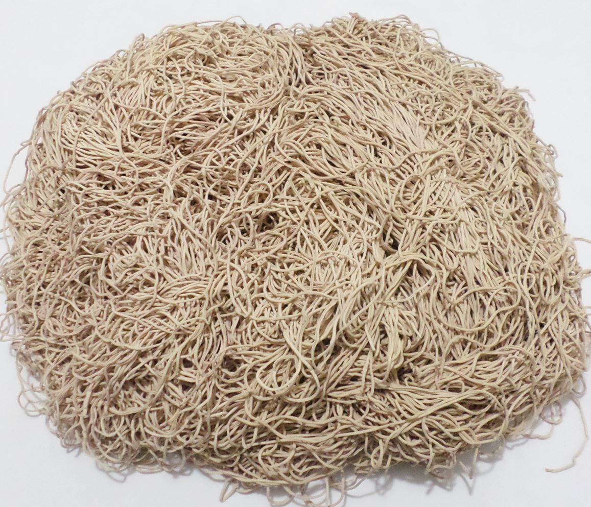 Tira de Macarrão/Espaguete 1.300g Bege