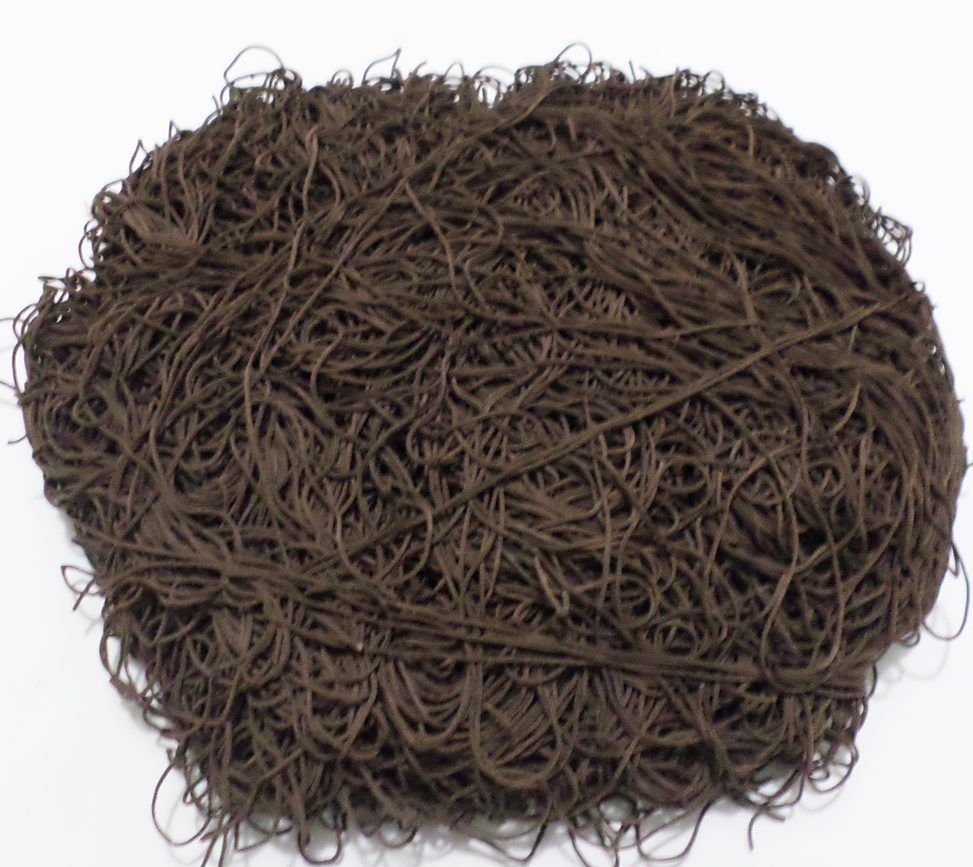 Tira de Macarrão/Espaguete 1.430g Marrom