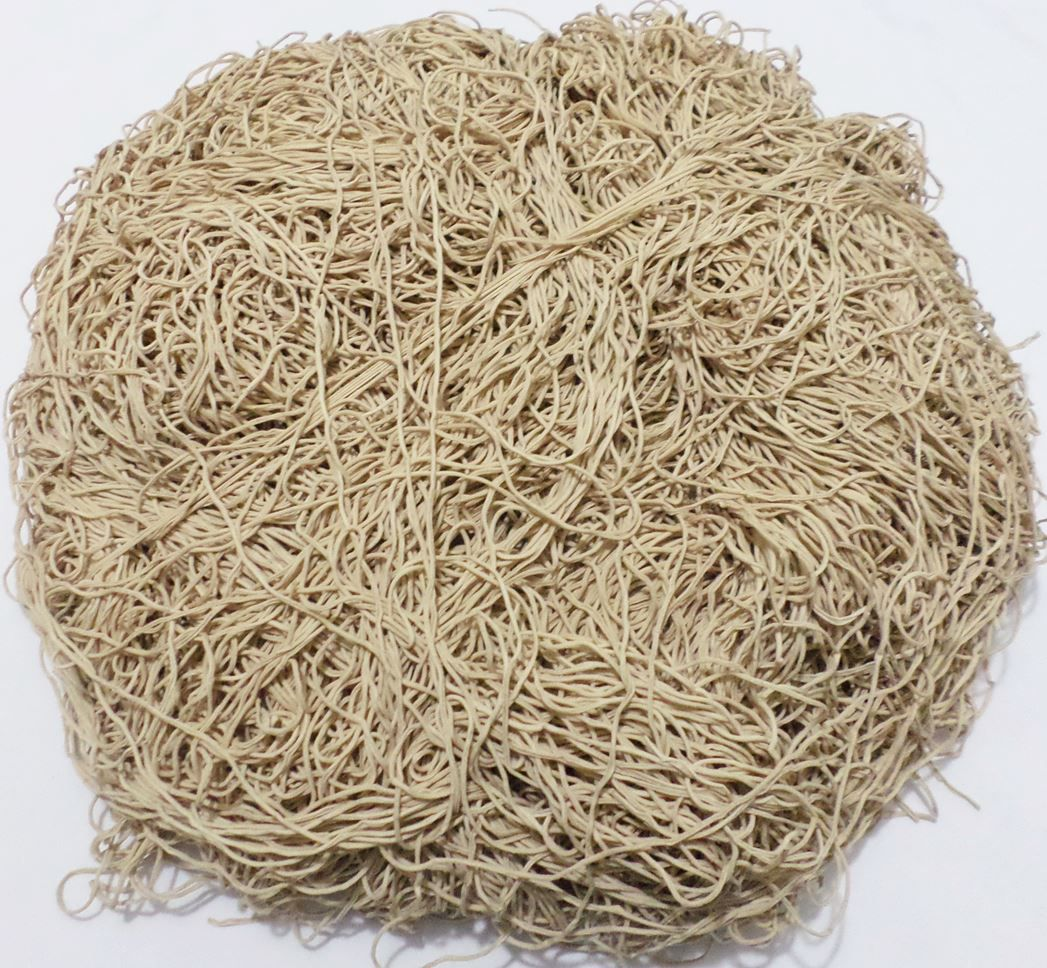 Tira de Macarrão/Espaguete 1kg Bege